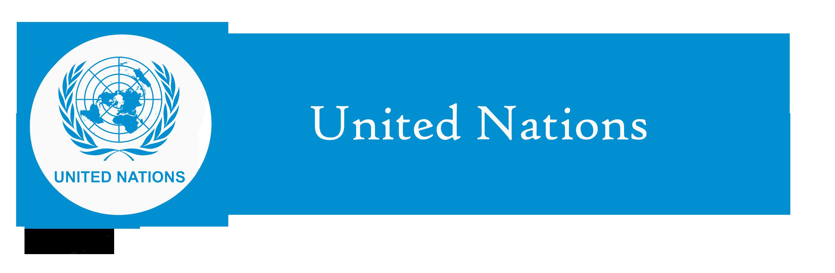 important international organisations